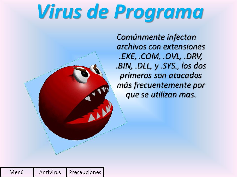 Virus de Programa