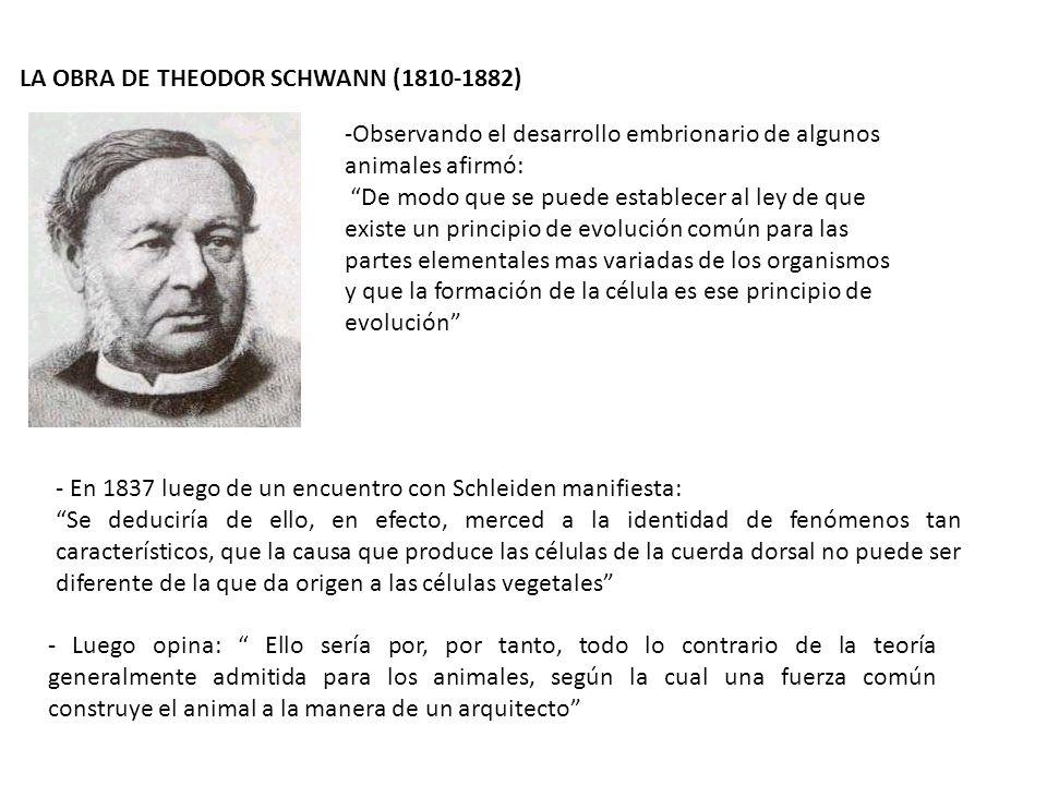 LA OBRA DE THEODOR SCHWANN (1810-1882)