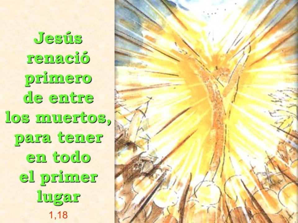 Jesús renació primero de entre los muertos, para tener en todo