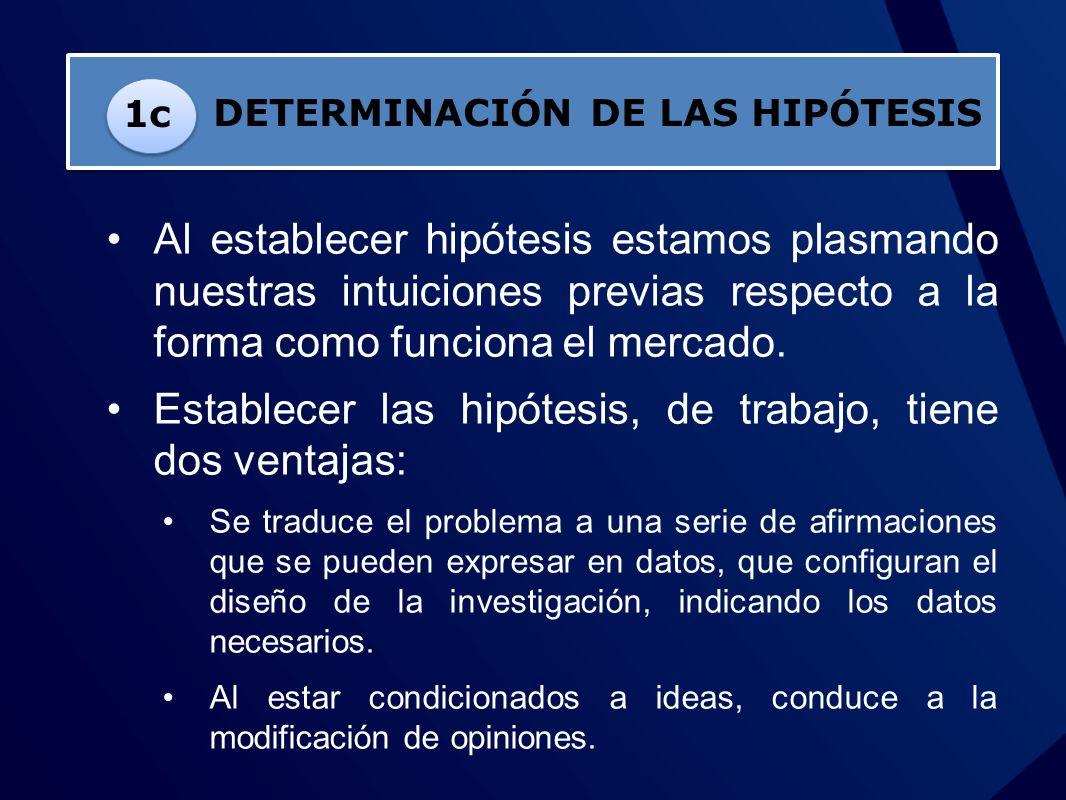 DETERMINACIÓN DE LAS HIPÓTESIS