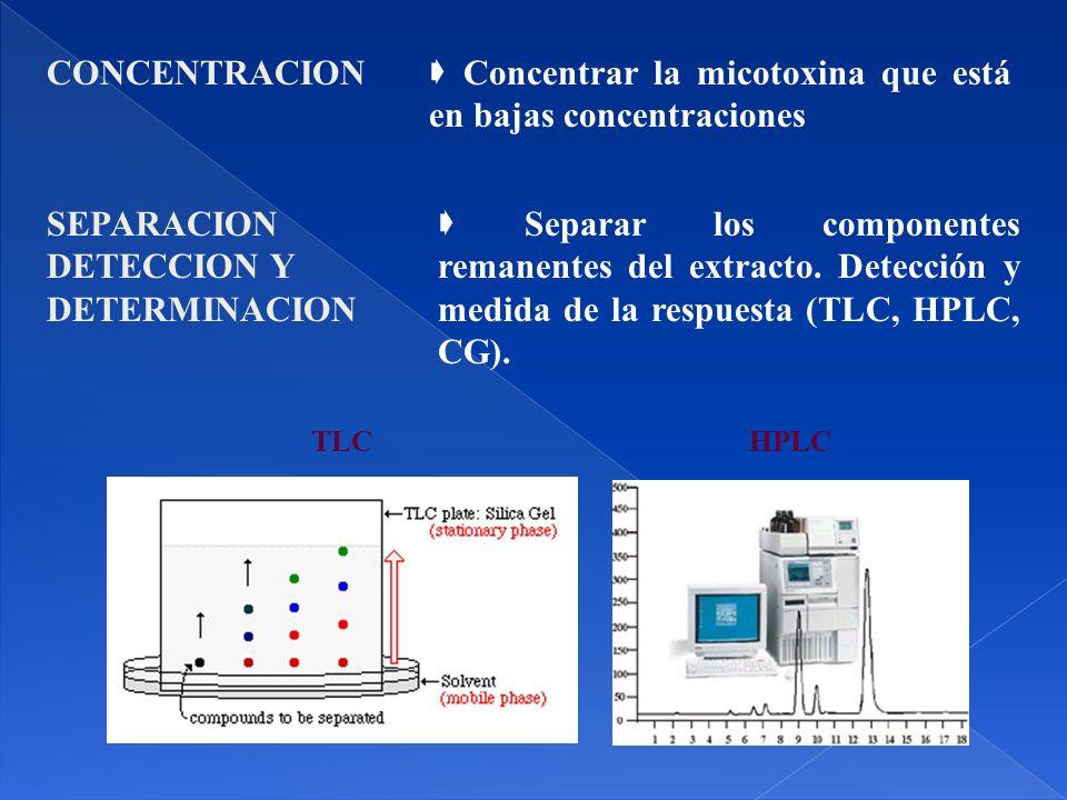  Concentrar la micotoxina que está en bajas concentraciones