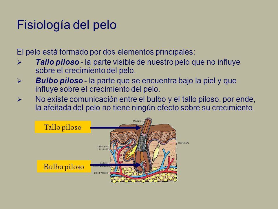 Fisiología del pelo El pelo está formado por dos elementos principales: