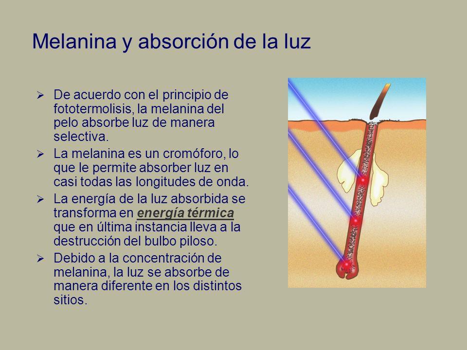 Melanina y absorción de la luz