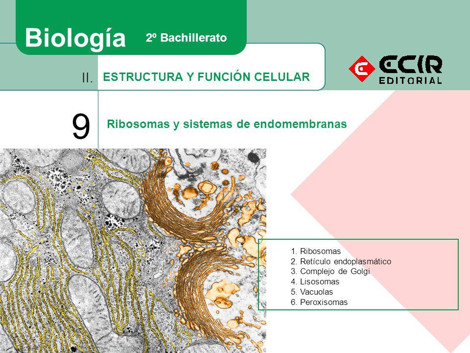 9 Biología II. 2º Bachillerato ESTRUCTURA Y FUNCIÓN CELULAR