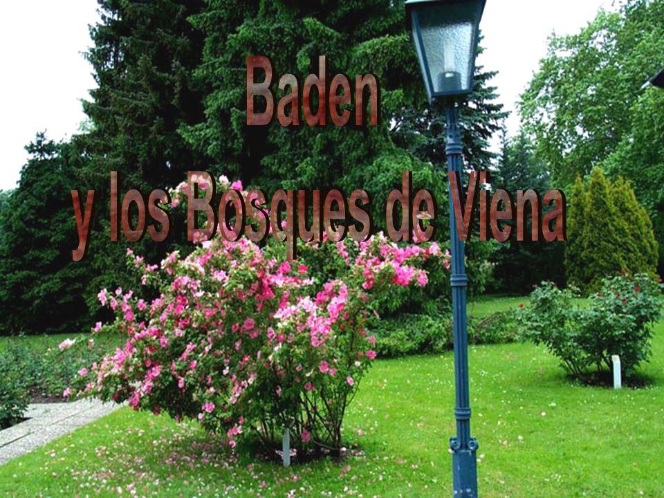 Baden y los Bosques de Viena