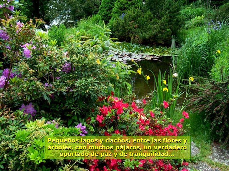 Pequeños lagos y riachos, entre las flores y árboles, con muchos pájaros, un verdadero apartado de paz y de tranquilidad...