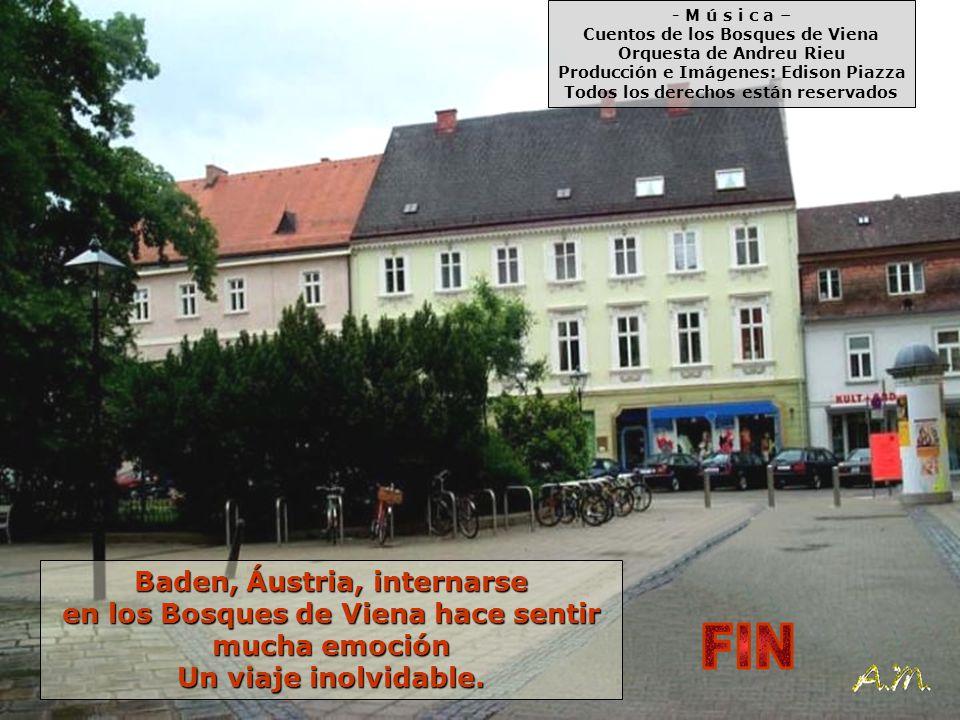 FIN Baden, Áustria, internarse