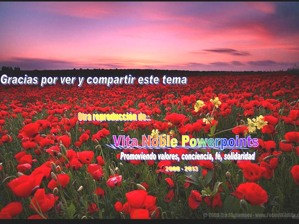 www.vitanaoblepowerpoints.net