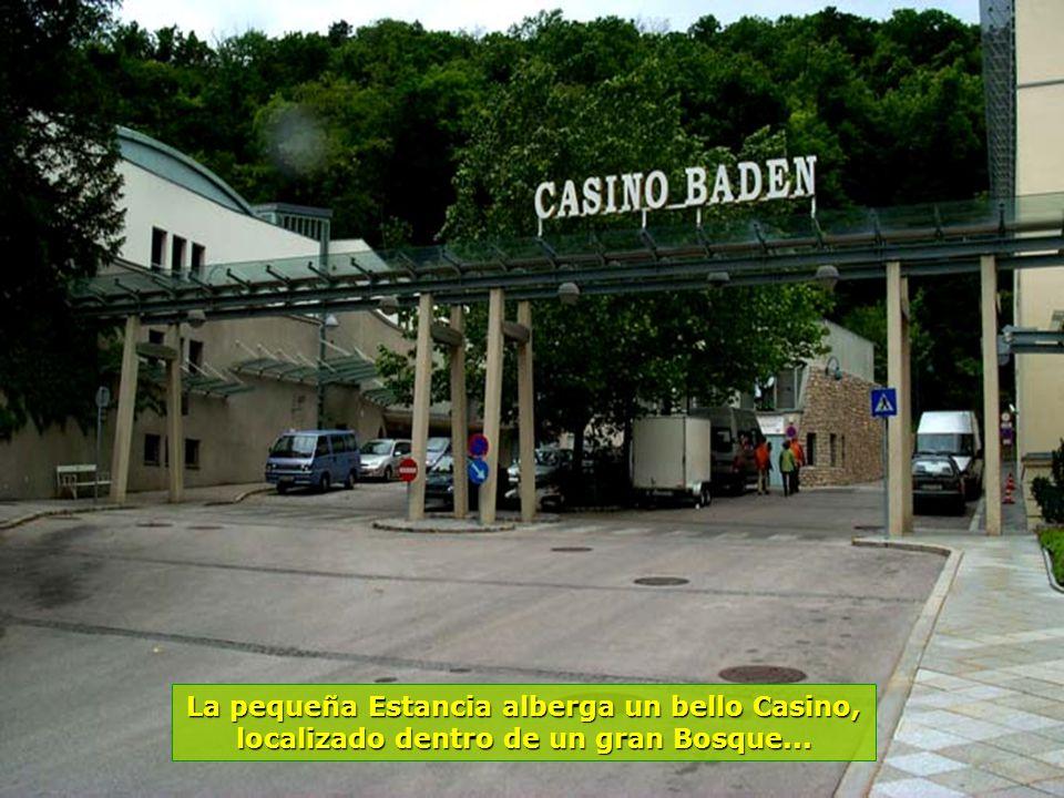 La pequeña Estancia alberga un bello Casino, localizado dentro de un gran Bosque...