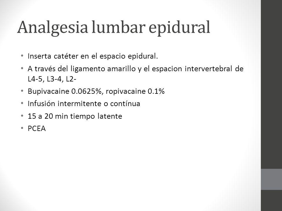 Analgesia lumbar epidural