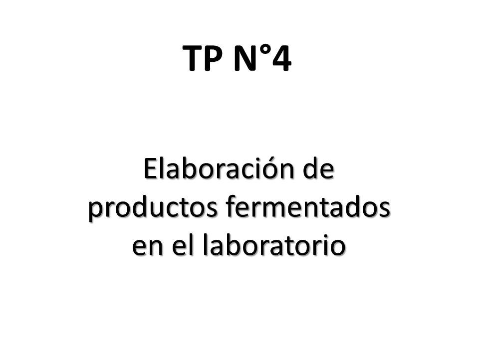 Elaboración de productos fermentados en el laboratorio