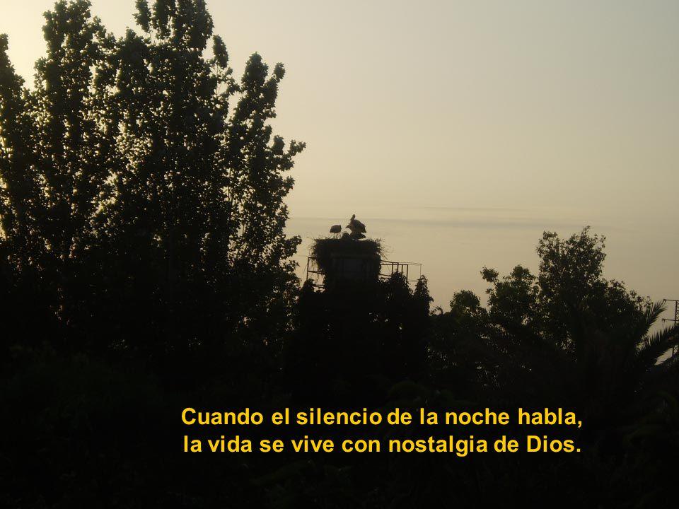 Cuando el silencio de la noche habla,