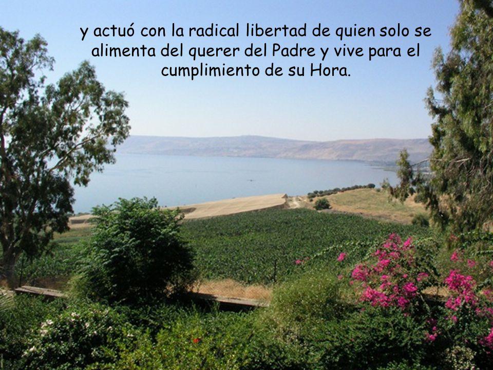 y actuó con la radical libertad de quien solo se alimenta del querer del Padre y vive para el cumplimiento de su Hora.