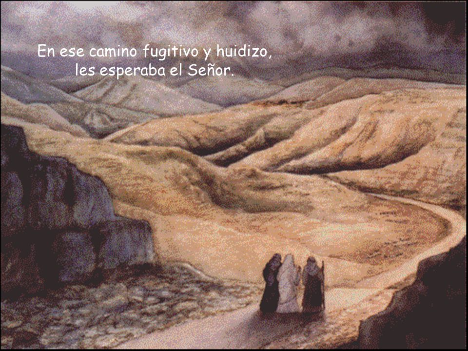 En ese camino fugitivo y huidizo, les esperaba el Señor.
