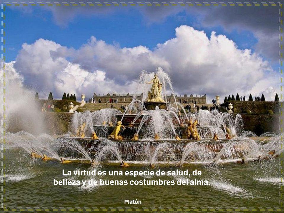 La virtud es una especie de salud, de belleza y de buenas costumbres del alma.