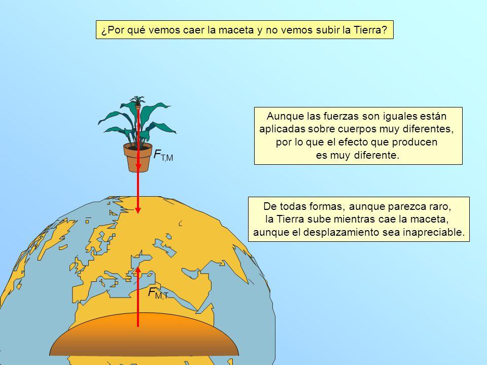 FT,M FM,T ¿Por qué vemos caer la maceta y no vemos subir la Tierra
