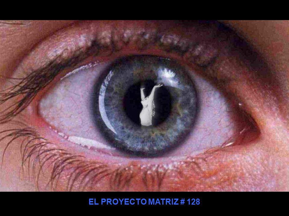 EL PROYECTO MATRIZ # 128