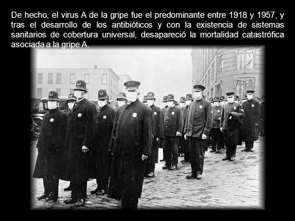 De hecho, el virus A de la gripe fue el predominante entre 1918 y 1957, y tras el desarrollo de los antibióticos y con la existencia de sistemas sanitarios de cobertura universal, desapareció la mortalidad catastrófica asociada a la gripe A.