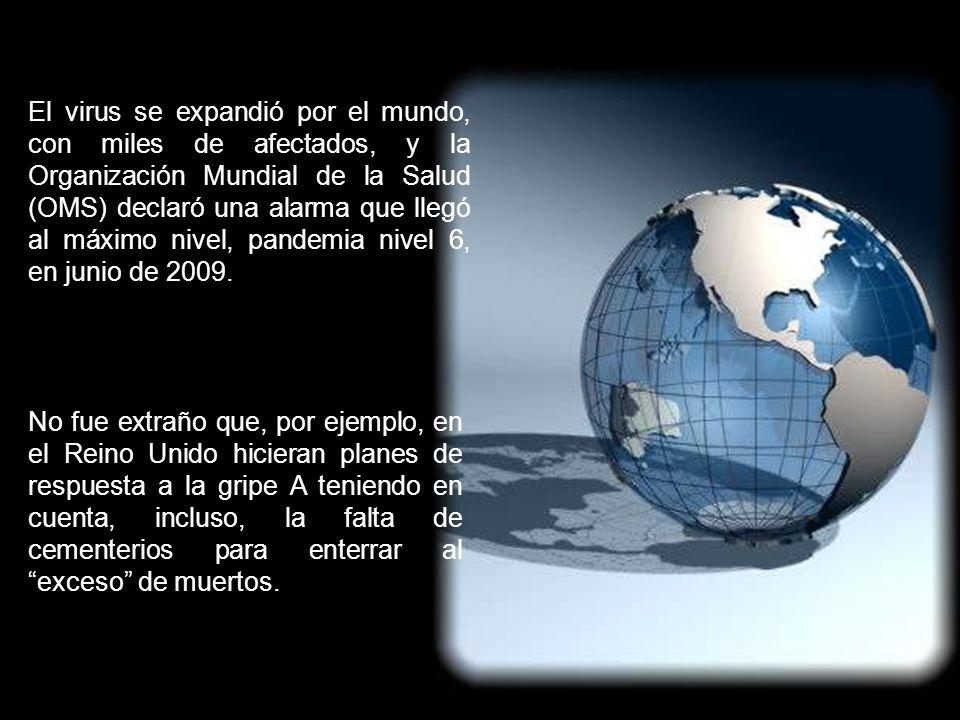 El virus se expandió por el mundo, con miles de afectados, y la Organización Mundial de la Salud (OMS) declaró una alarma que llegó al máximo nivel, pandemia nivel 6, en junio de 2009.