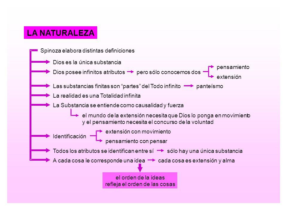 LA NATURALEZA Spinoza elabora distintas definiciones