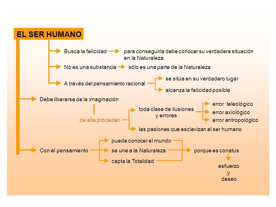 EL SER HUMANO Busca la felicidad