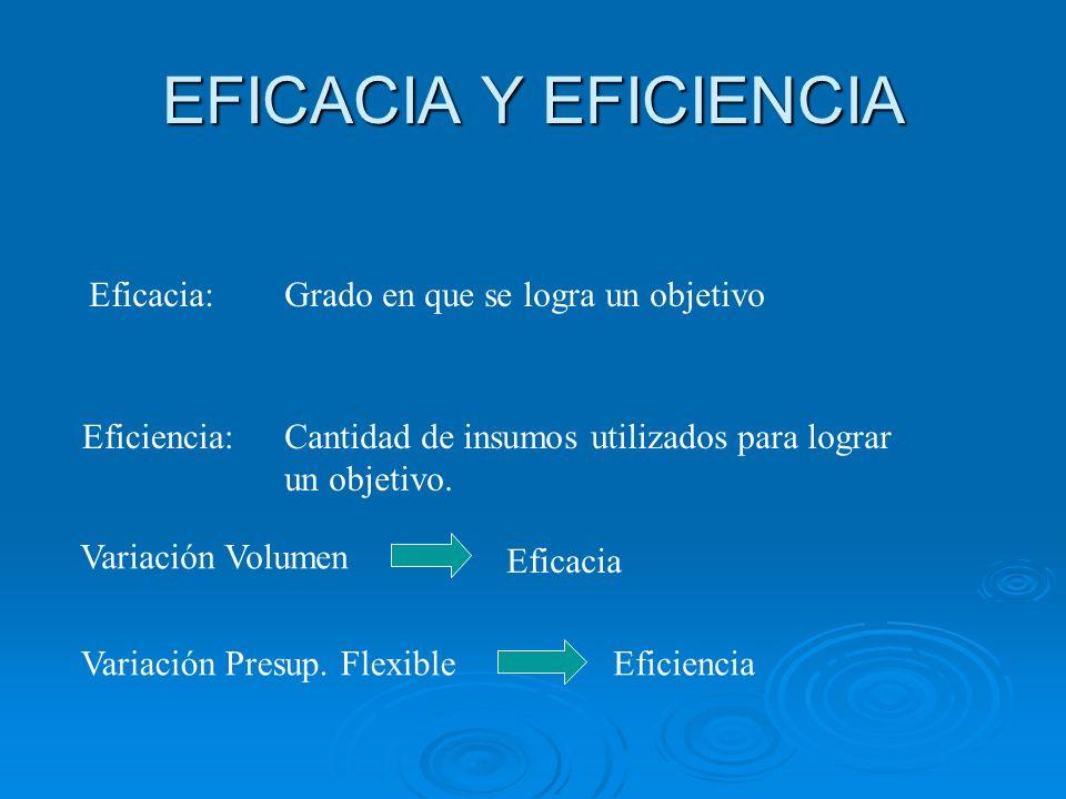 EFICACIA Y EFICIENCIA Eficacia: Grado en que se logra un objetivo