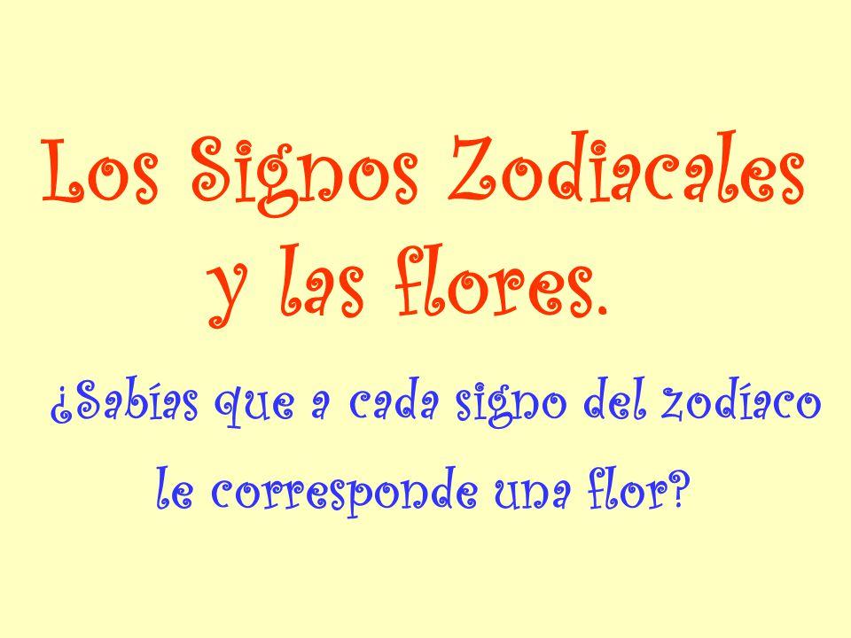 Los Signos Zodiacales y las flores.