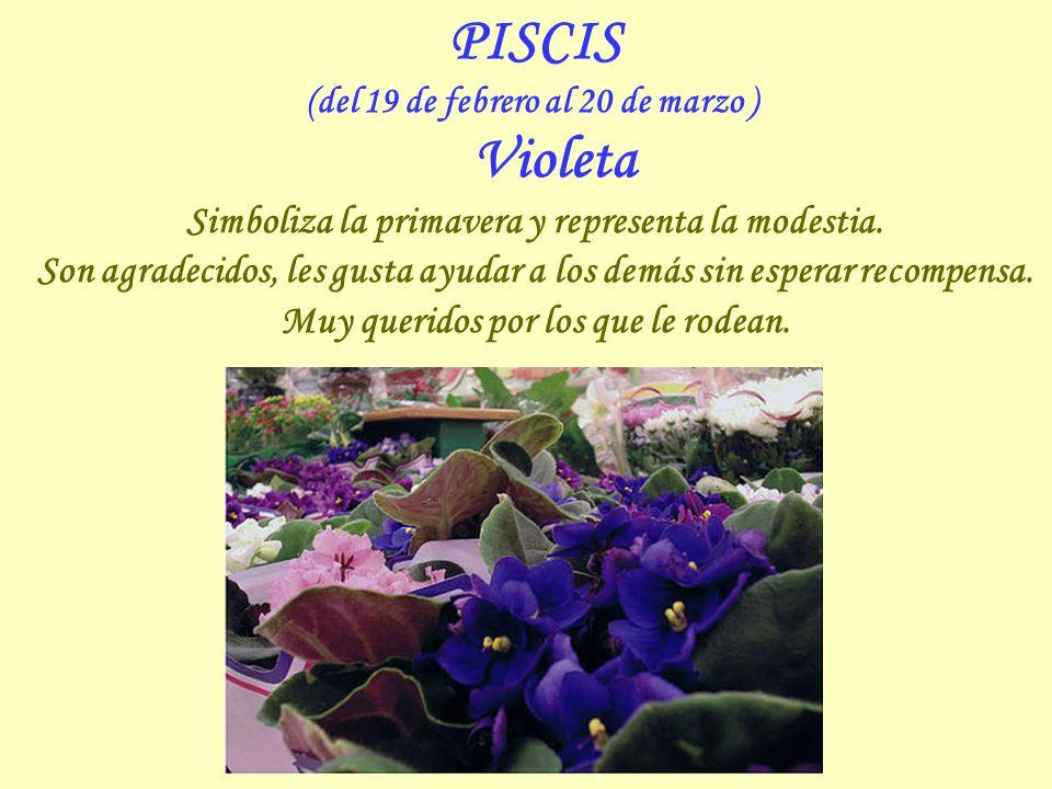 PISCIS Simboliza la primavera y representa la modestia.