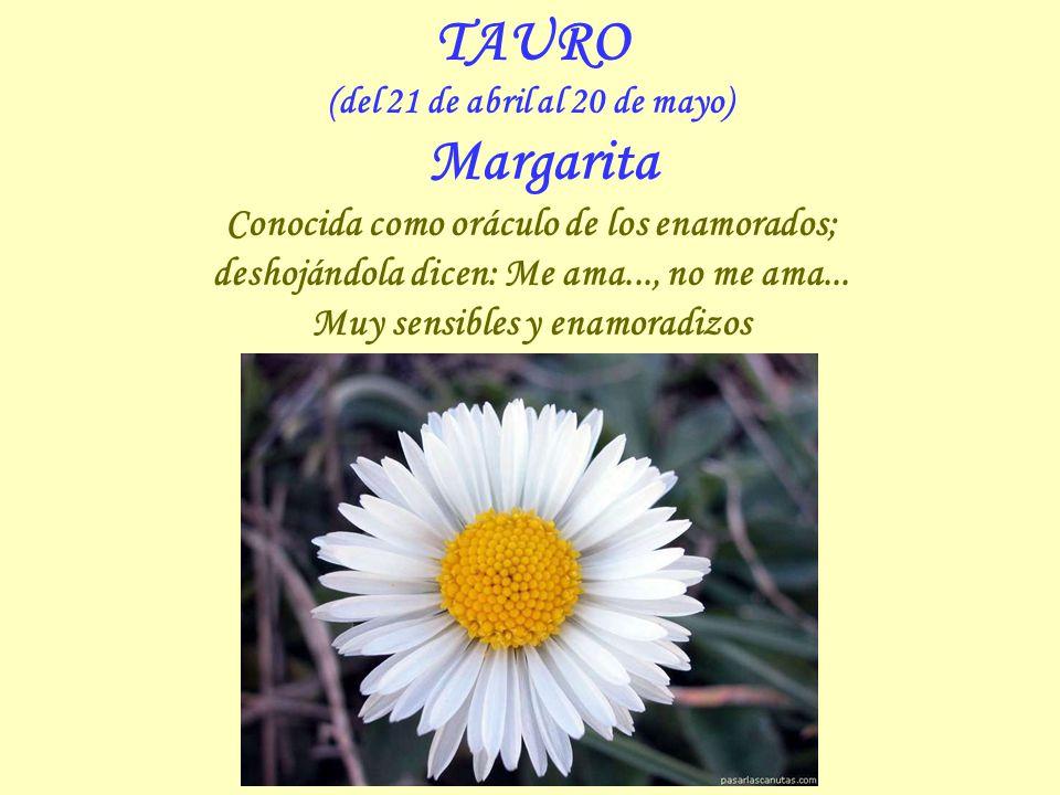 TAURO Conocida como oráculo de los enamorados;
