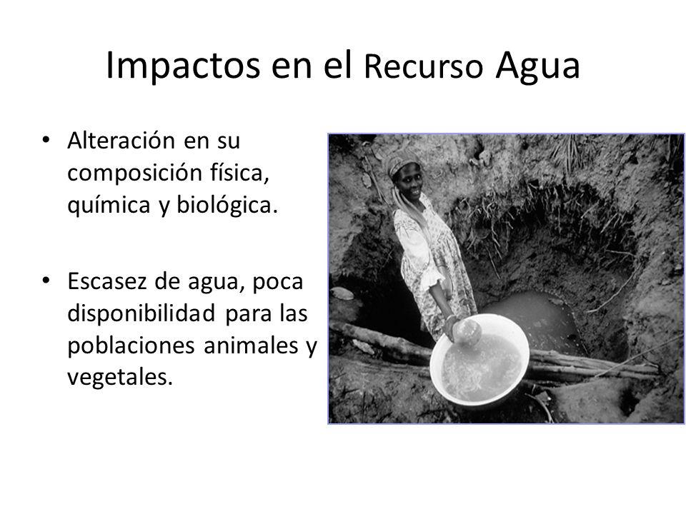Impactos en el Recurso Agua