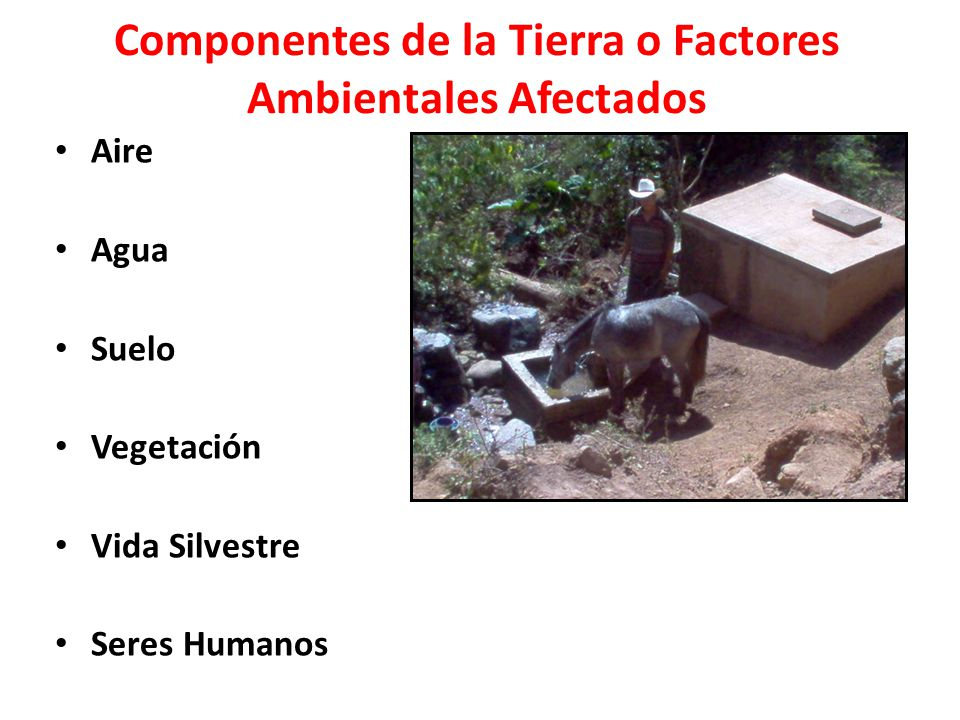 Componentes de la Tierra o Factores Ambientales Afectados