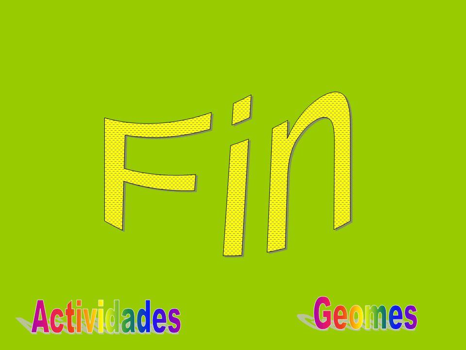 Fin Geomes Actividades