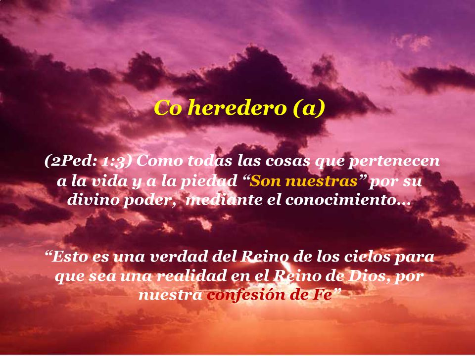 Co heredero (a)