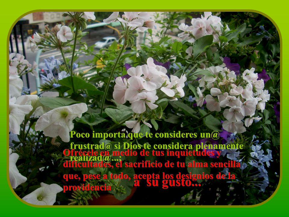 Poco importa que te consideres un@ frustrad@ si Dios te considera plenamente realizad@...;