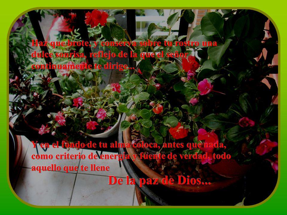 Haz que brote, y conserva sobre tu rostro una dulce sonrisa, reflejo de la que el señor continuamente te dirige...