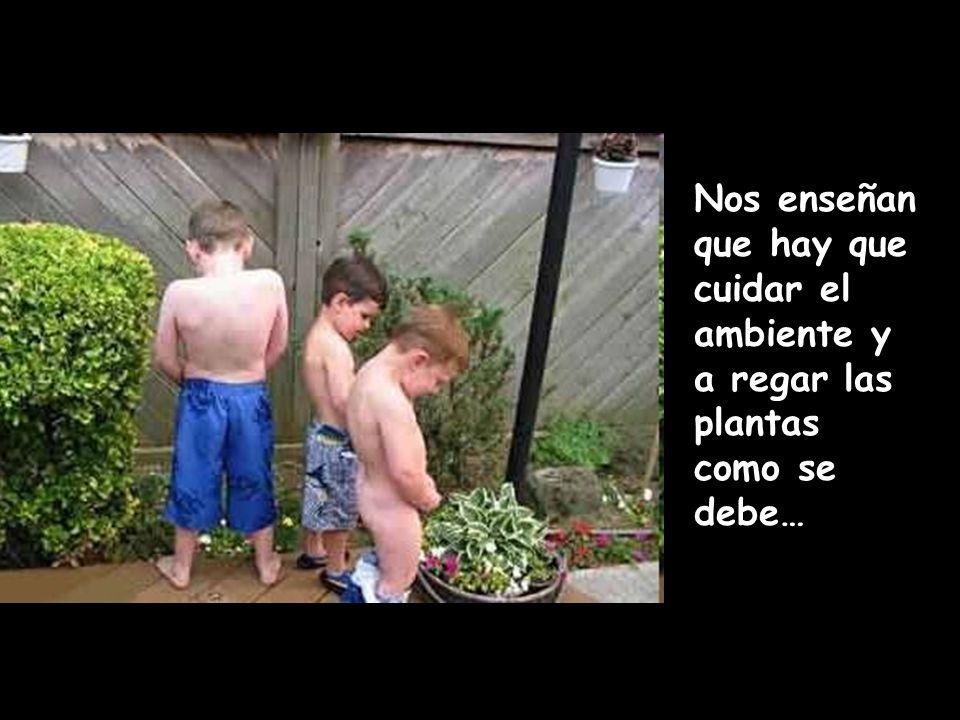 Nos enseñan que hay que cuidar el ambiente y a regar las plantas como se debe…