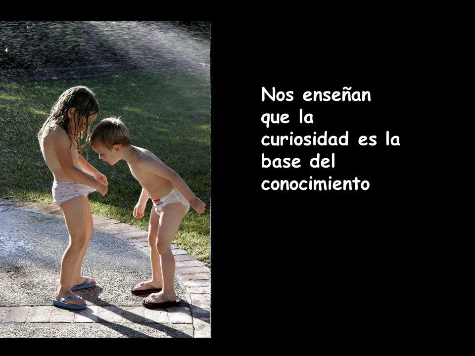 Nos enseñan que la curiosidad es la base del conocimiento