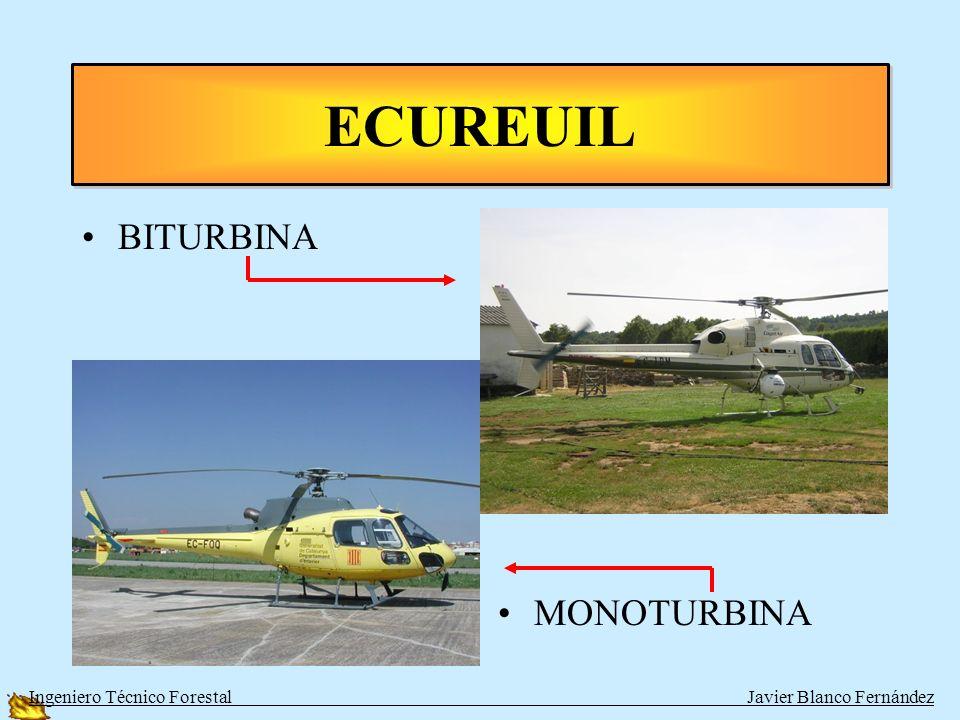 ECUREUIL BITURBINA MONOTURBINA
