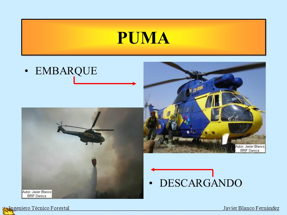 PUMA EMBARQUE DESCARGANDO