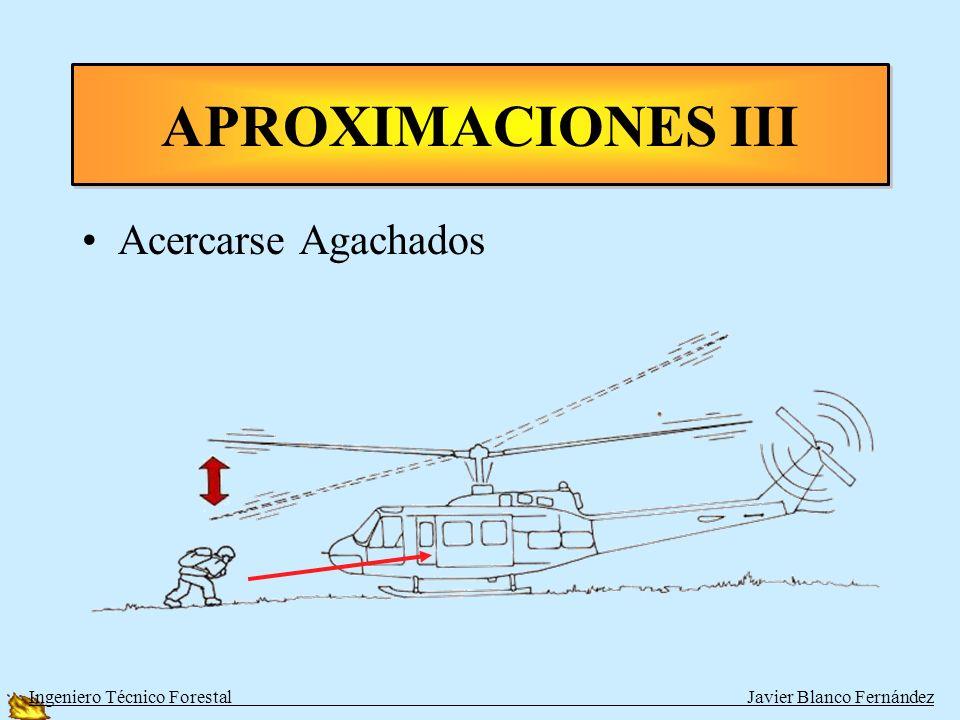 APROXIMACIONES III Acercarse Agachados