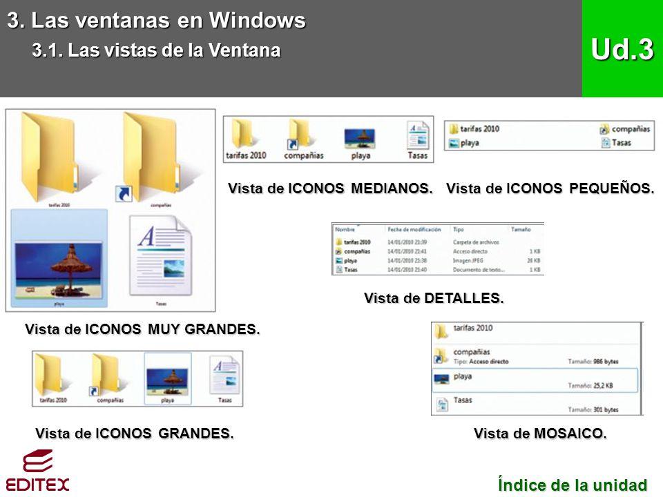 Ud.3 3. Las ventanas en Windows 3.1. Las vistas de la Ventana