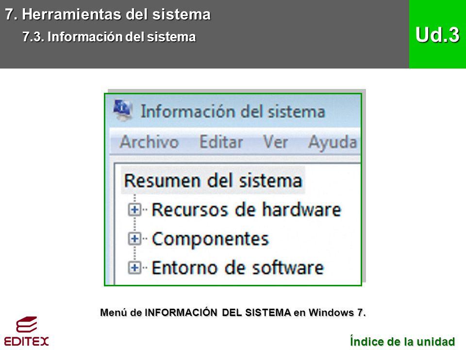 Menú de INFORMACIÓN DEL SISTEMA en Windows 7.