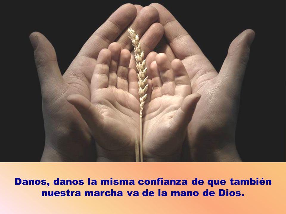Danos, danos la misma confianza de que también nuestra marcha va de la mano de Dios.