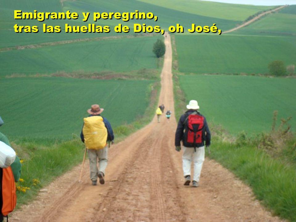 Emigrante y peregrino, tras las huellas de Dios, oh José,