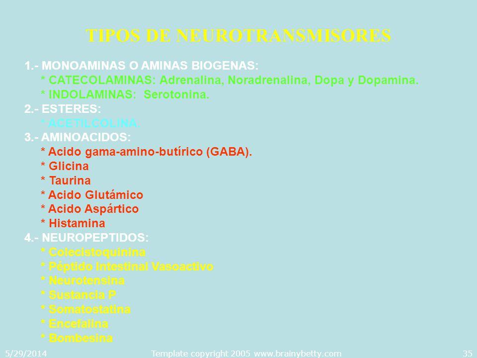 TIPOS DE NEUROTRANSMISORES