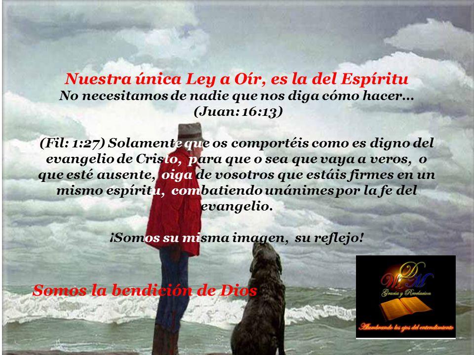 Nuestra única Ley a Oír, es la del Espíritu