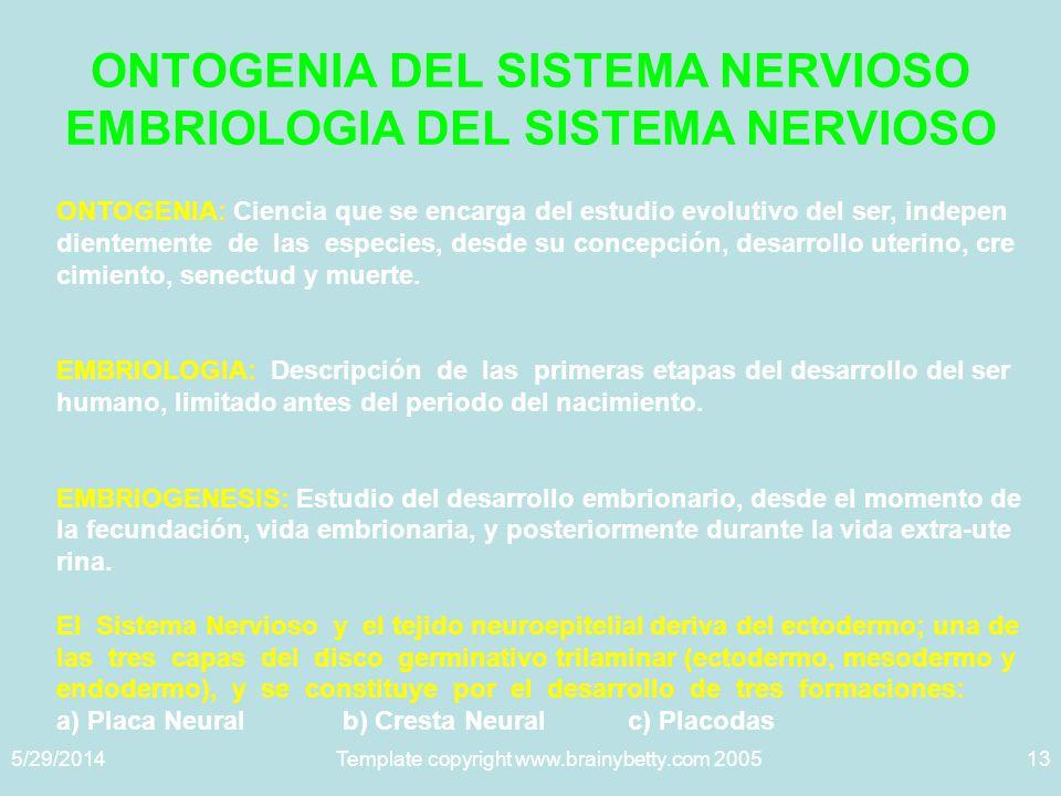 ONTOGENIA DEL SISTEMA NERVIOSO EMBRIOLOGIA DEL SISTEMA NERVIOSO
