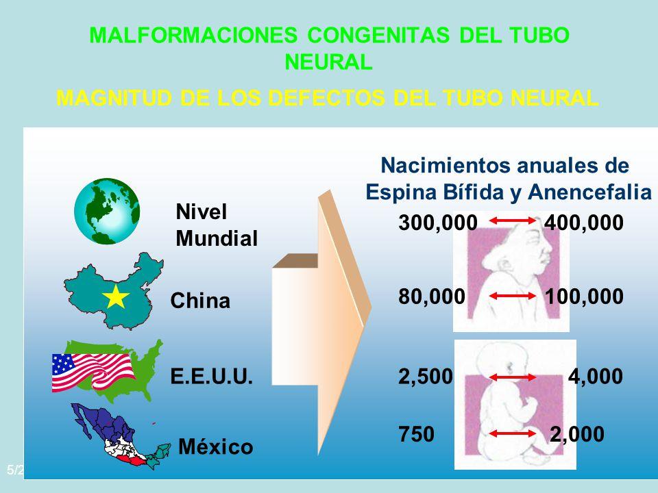 MALFORMACIONES CONGENITAS DEL TUBO NEURAL
