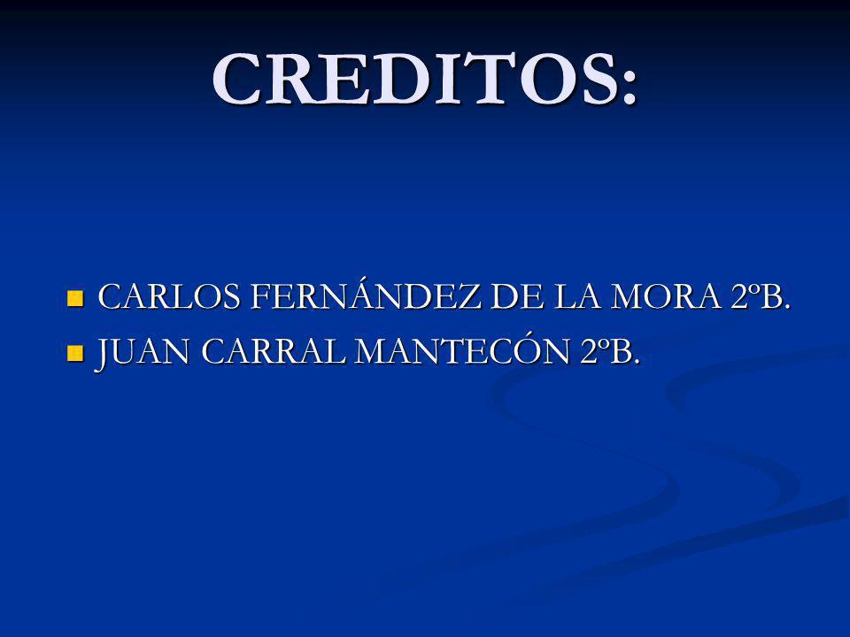 CREDITOS: CARLOS FERNÁNDEZ DE LA MORA 2ºB. JUAN CARRAL MANTECÓN 2ºB.