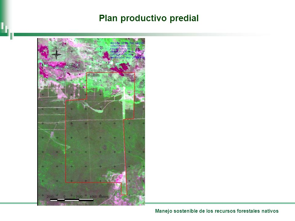 Plan productivo predial